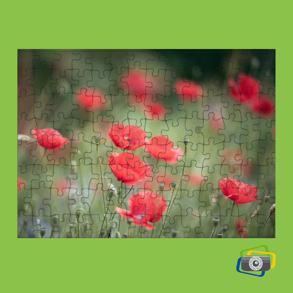 puzzle-personalizzato-color2000